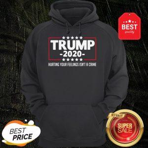 Nice Trump 2020 Hurting Your Feelings Isn't A Crime Hoodie