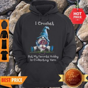 Nice Gnome I Crochet But My Favorite Hobby Is Collecting Yarn Hoodie