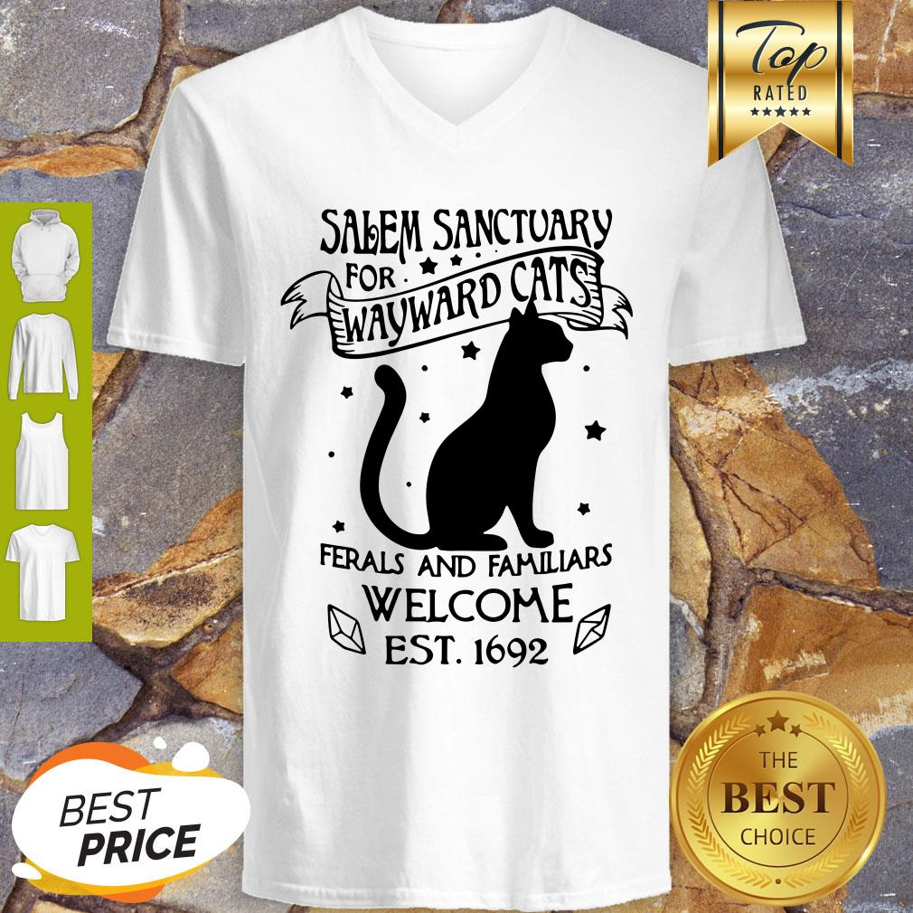 Pretty Salem Sanctuary For Wayward Cats Ferals And Familiars Welcome V-neck - Design By Refinetee.com