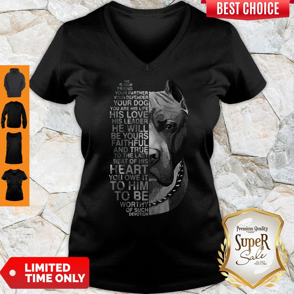 Top Pitbull He Is Your Friend Your Partner Youe Defender V-Neck
