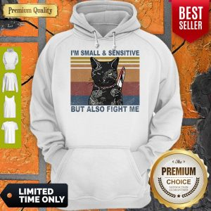 Funny Black Cat Yakuza I'm Small And Sensitive But Also Fight Me Hoodie
