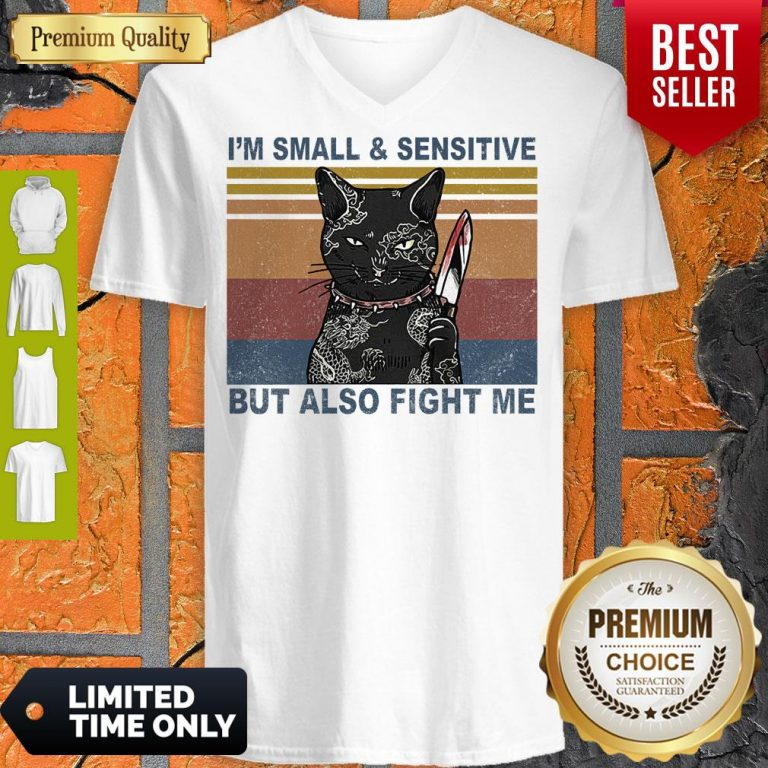 Funny Black Cat Yakuza I'm Small And Sensitive But Also Fight Me V-Neck