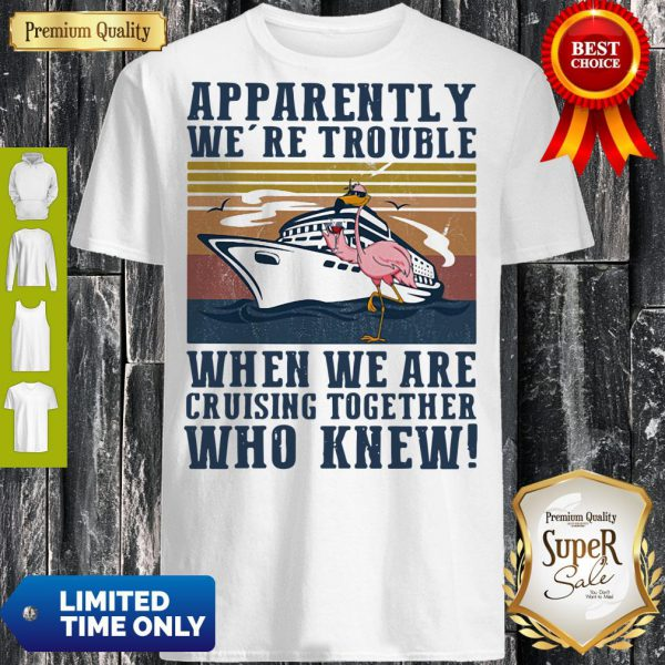 Funny Flamingo Apparently Were Trouble When We Are Cruising Together Who Knew Vintage Hoodie