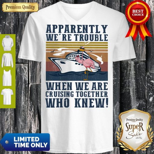 Funny Flamingo Apparently Were Trouble When We Are Cruising Together Who Knew Vintage V-Neck