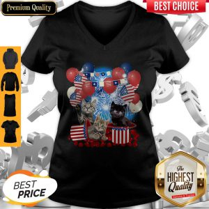 Pretty Cats Balloons Fireworks Independence Day 4th Of July V-Neck
