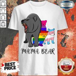 Wonderful I Like LGBT Mama Bear Shirt