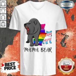 Wonderful I Like LGBT Mama Bear V-neck