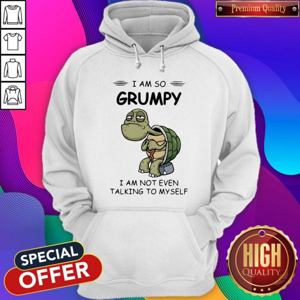 Sweet Turtle I Am So Grumpy I Am Not Even Talking To Myself Hoodie