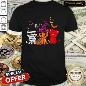 Cats Witch Boo Halloween Shirt