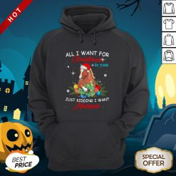 All I Want For Christmas Is You Just Kidding I Want Horses Hoodie