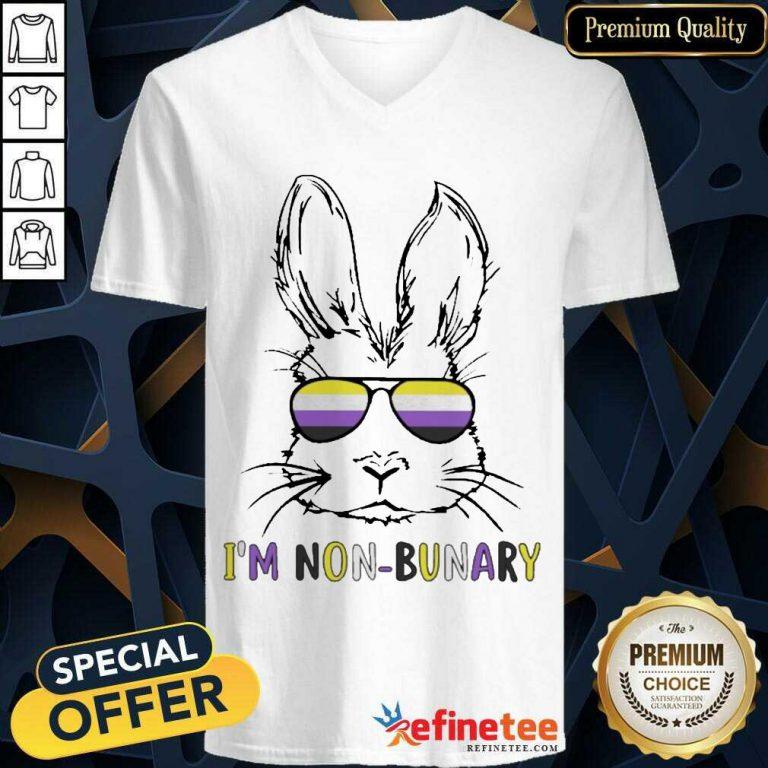Hot Bunny Im Non Bunary Positive V-neck