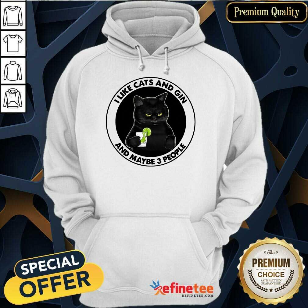 Hot I Like Cat And Gin And Maybe 3 People Hoodieople Hoodie