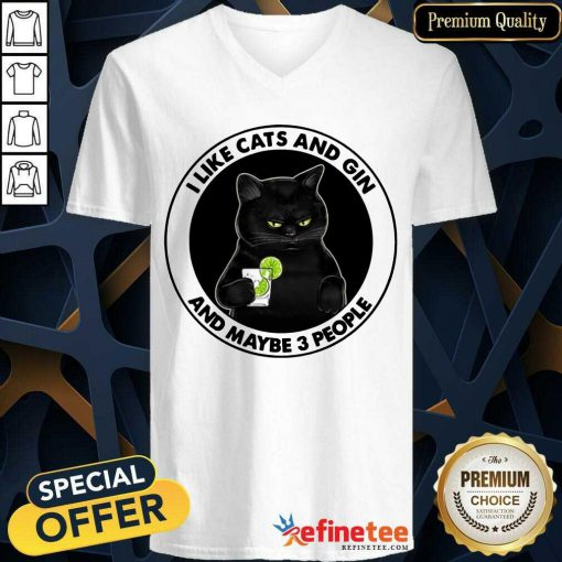 Hot I Like Cat And Gin And Maybe 3 People V-neck