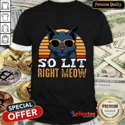 Cat So Lit Right Meow Vintage Shirt